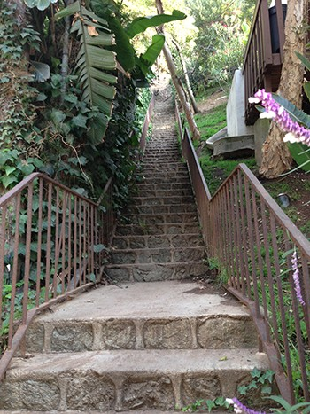 Beachwood Canyon Loop #2 - Westshire Stairs